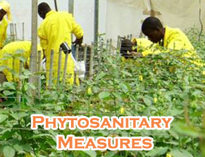 Best Sanitary & Phytosanitary Measures Colleges - Certificate & Diploma