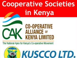 Best Way for People to Form the Best Cooperative Societies in Kenya