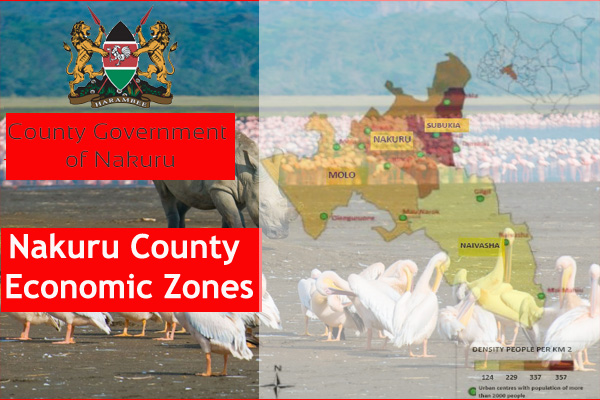 Economic Activities in all Constituencies in Nakuru County