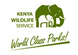 Kenya Wildlife Service Training Institute Tenders