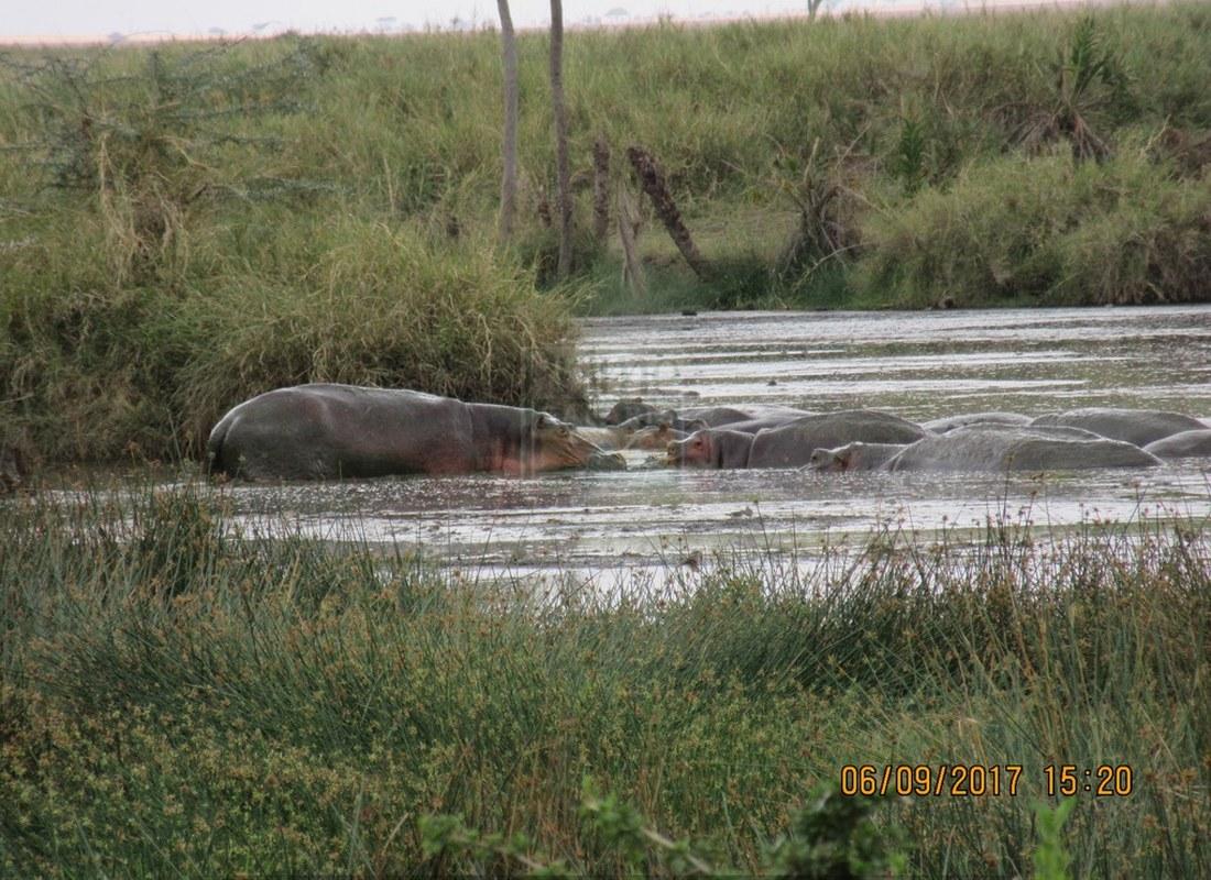 Mount Longonot National Park Kenya
