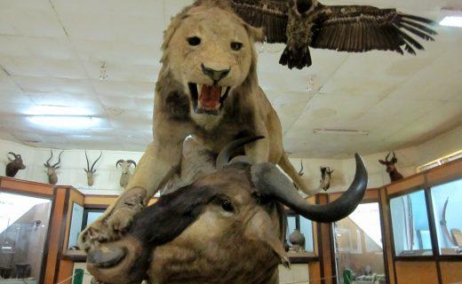 The Kisumu Museum in Kenya