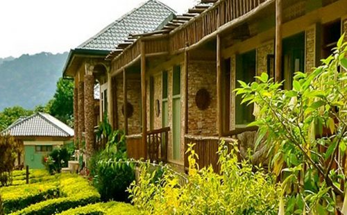 Mid-Range Accommodation Bwindi Impenetrable National Park Uganda