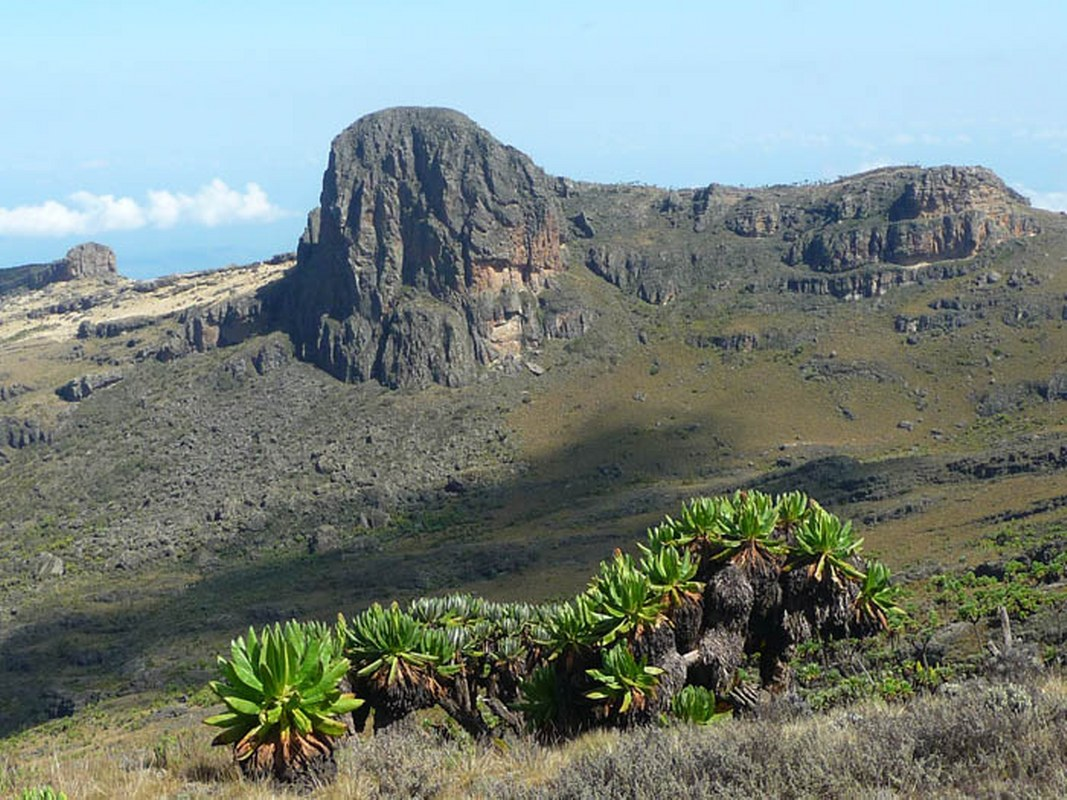 Mountain Climbing Destination elgon
