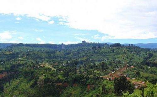 The Piswa Trail Mount Elgon National Park Uganda