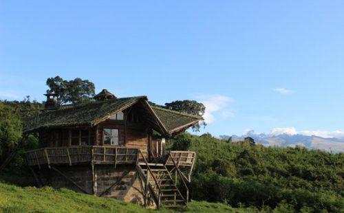 Castle Forest Lodge in Mount Kenya National Park Kenya