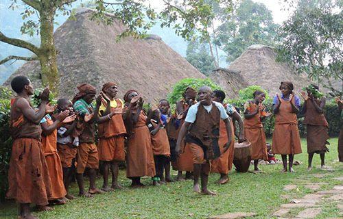 cultural in bwindi