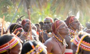 get Audio of Samburu Traditional Ceremony Songs for your project or documentary