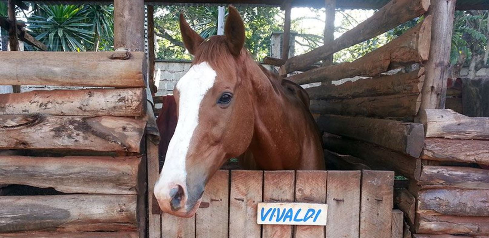Horse Back Riding Destinations in Kenya, best places  for horse riders fans