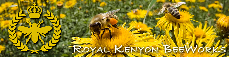 raw flagstaff Honey FAQ  Royal Kenyon BeeWorks www.FlagstaffHoney.com