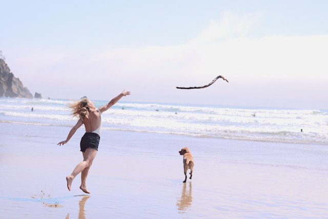 Girl throwing a stick to a dog on a beach