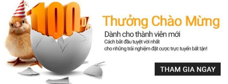 Cachchoi.net link vào Cachchoi 188bet hinh anh 2