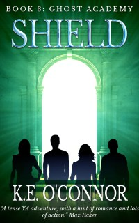 Shield YA paranormal adventure novel