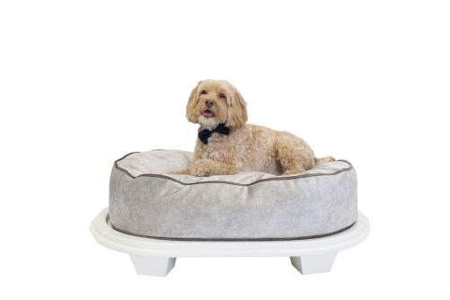 Daisy bed, color Cloud with optional frame