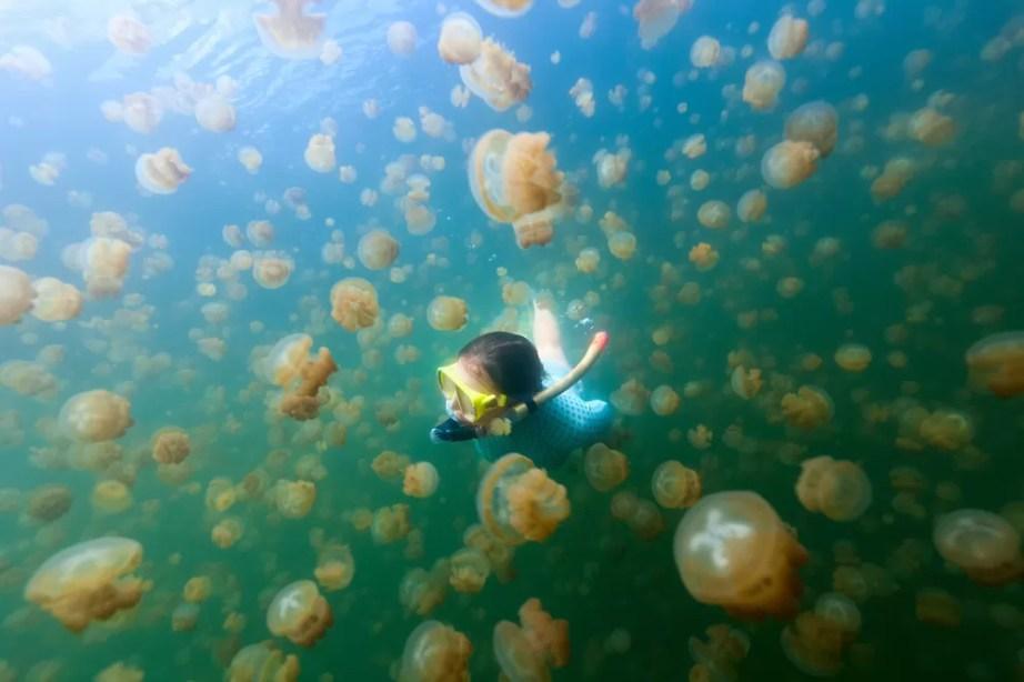 travel berau, negeri ubur-ubur, danau ubur-ubur, travel blogger