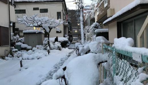 昨日はヤバいぐらいの大雪で…