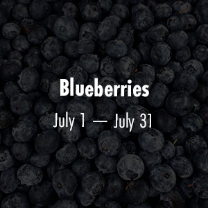 Blueberries July 1 - July 31