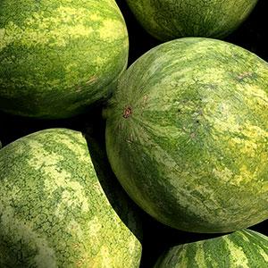 Watermelon July 1 - September 20