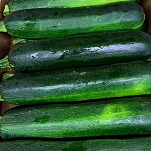 Zucchini June 15 - October 31