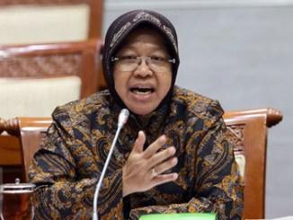Tri Rismaharini, Wali Kota Surabaya - www.liputan6.com