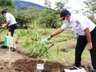 PT KAI Tanam 18.000 Bibit Pohon - jogja.tribunnews.com