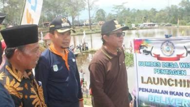 Photo of Adirozal Dampingi Fachrori Panen Ikan dan Launching Penjualan Ikan Online