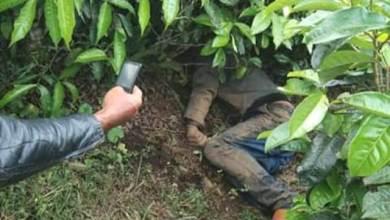 Photo of Warga Temukan Mayat di Kebun Teh Kayu Aro Kerinci