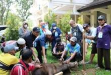Photo of Nurhayati: Kurban Juga Bisa Menjaga Talisialturahmi Fakultas Peternakan UNJA