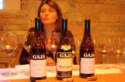 Q & A with Gaia Gaja