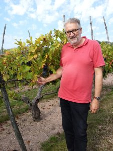 © Kerin O'Keefe | Christoph Kunzli of Le Piane in his vineyard in Boca
