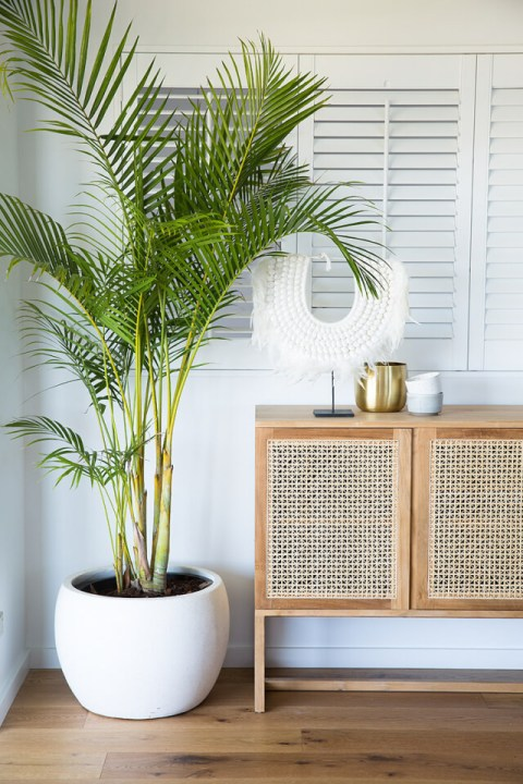 rattan wicker sideboard cafe furniture kernig krafts