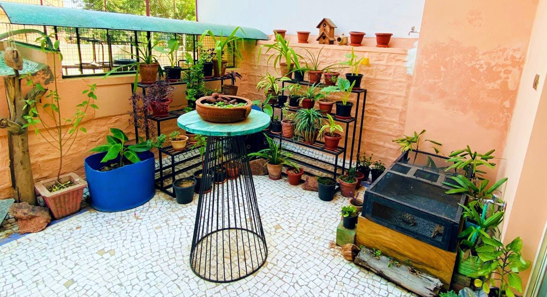 Kernig krafts backyard garden.jpg