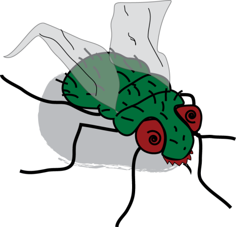 Zombie Fly Returns