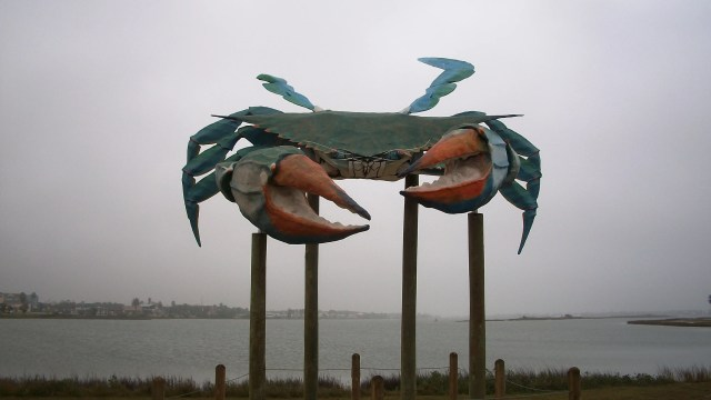 Big Blue, the World's Largest Blue Crab, Rockport, Texas.