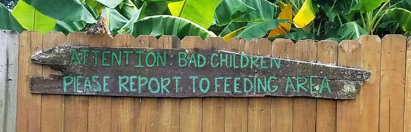Feed your kids to the gators.