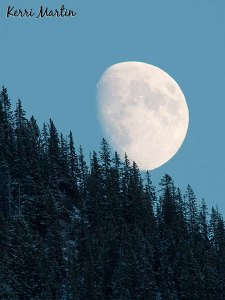 Moon Set, Banff National Park