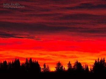 Springbank Sunrise
