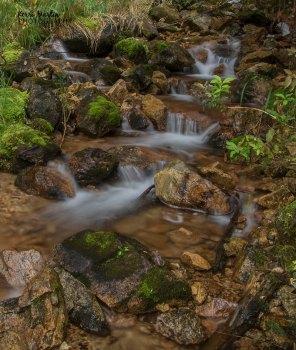 BC Autumn Falls