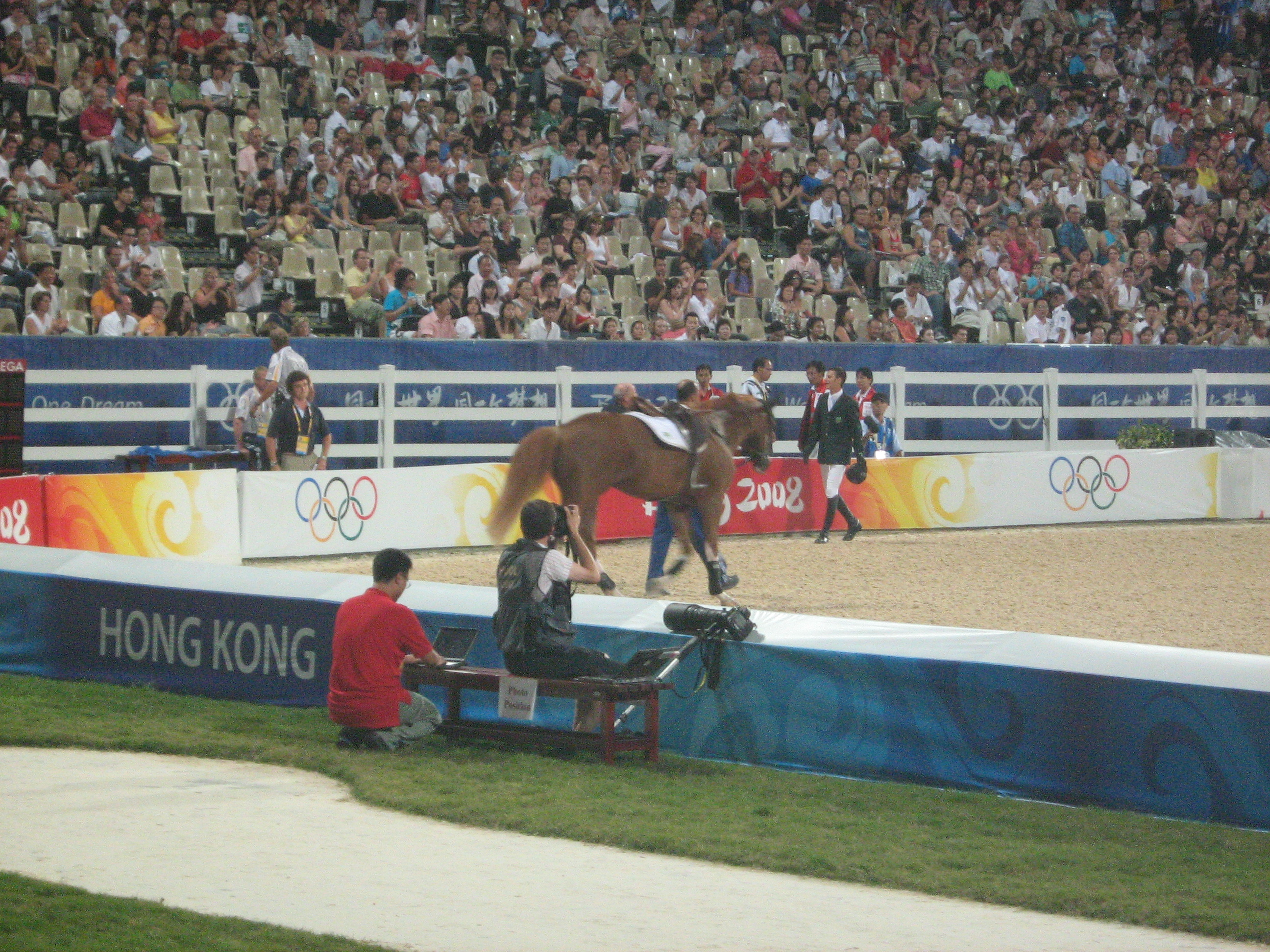 ....although they looked great, they met their fate at the 2nd last fence (the massive oxer) where the horse fell.