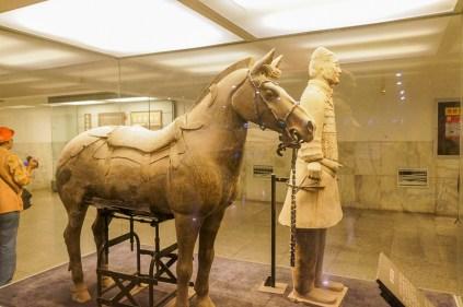 Calvaryman & saddled Horse