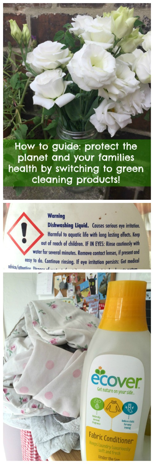 What's in the cleaning products you use every day and are they harming you and the planet? Find out how you can easily protect your family and the planet by switching your products!