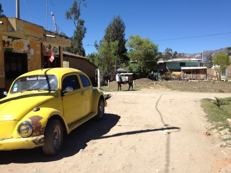 Beetle and Burro