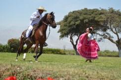 Caballero and Señorita 6