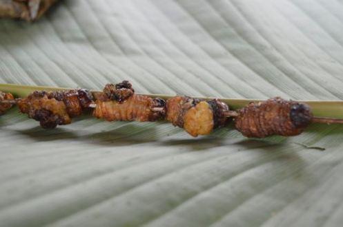 Grilled Slugs