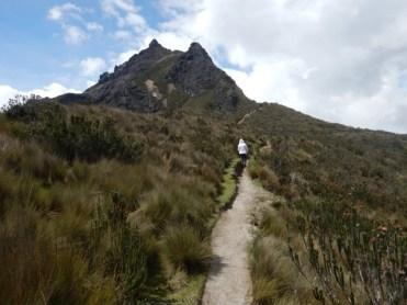 Heading for the Peak