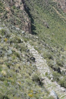 Back on the Inca Trail