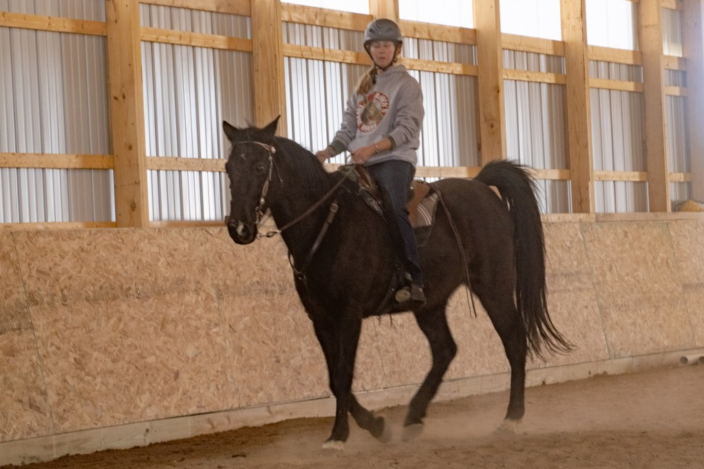 Working Equitation Feb 2 3
