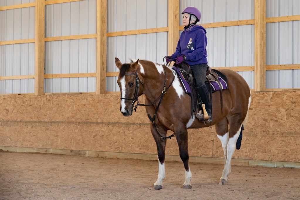 Working Equitation Feb 2 13