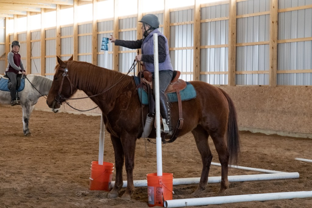 Working Equitation Feb 2 23