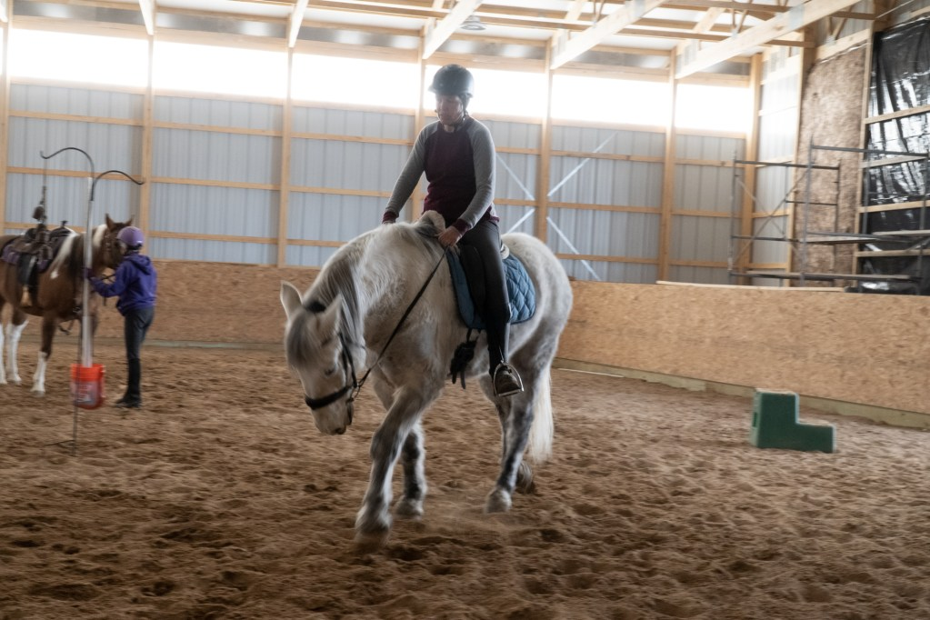 Working Equitation Feb 2 31